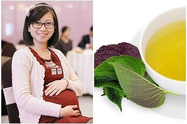Uống lá tía tô trước khi sinh bao lâu?