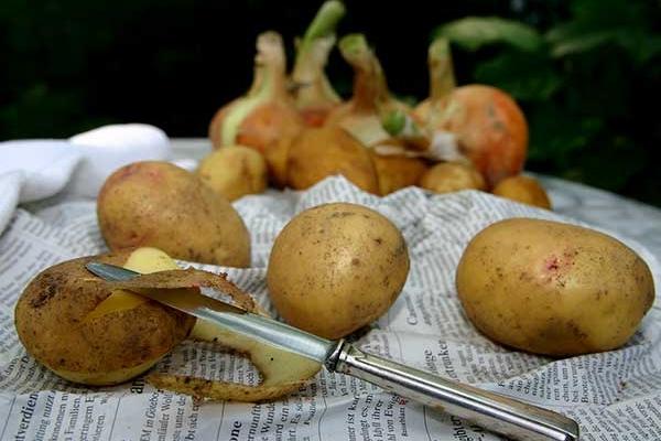 Viêm đại tràng có nên ăn khoai tây nhiều không?