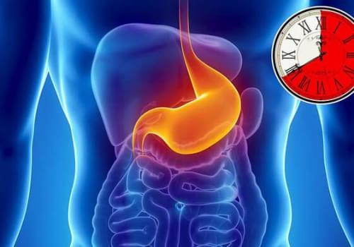 Quá trình tiêu hóa thức ăn ở dạ dày