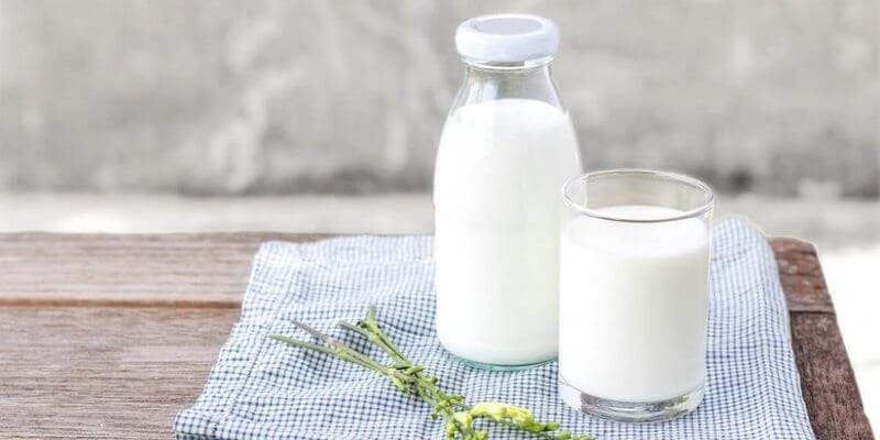 Tác dụng của sữa với cột sống?