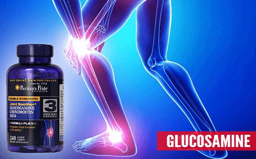 Glucosamine MSM Puritan's Pride