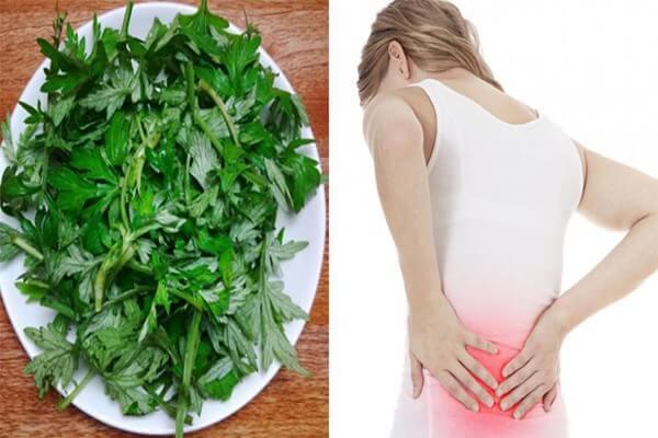 Chữa đau lưng bằng lá ngải cứu có ưu điểm gì?