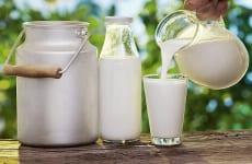 Các loại sữa dành cho người thoát vị đĩa đệm